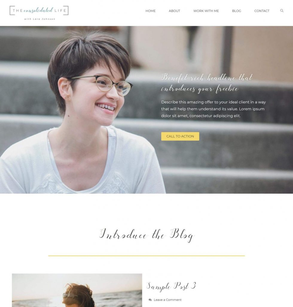 Lara Johnson design mockup 1